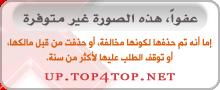 جيب التاجر بَ حشوه الكودو . p_9102ao101.jpg